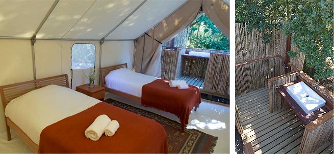 Safari-Tent-2